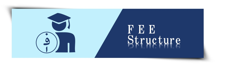Fees stucture